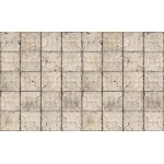 Aged Beige Pressed Tin Wallpaper