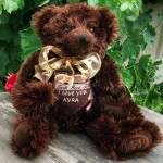 Baci: The valentines bear