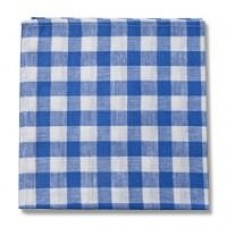 Country Checks Napkin (Blue)
